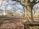 Deer lodge at Chapel Lodges thumbnail photo 28