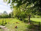 The Barn thumbnail photo 17