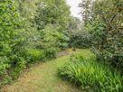 Walden Pond thumbnail photo 18