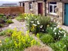 Pasture Cottage thumbnail photo 12