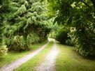 Spring Cottage thumbnail photo 12