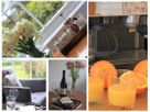 Eden House Wing thumbnail photo 9