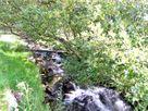 Y Bwthyn thumbnail photo 11