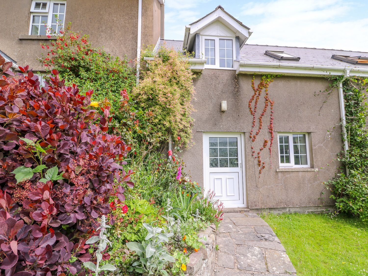 Edw Cottage - Mid Wales - 1004891 - photo 1
