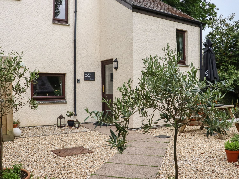 Camellia Cottage - Cornwall - 1006680 - photo 1