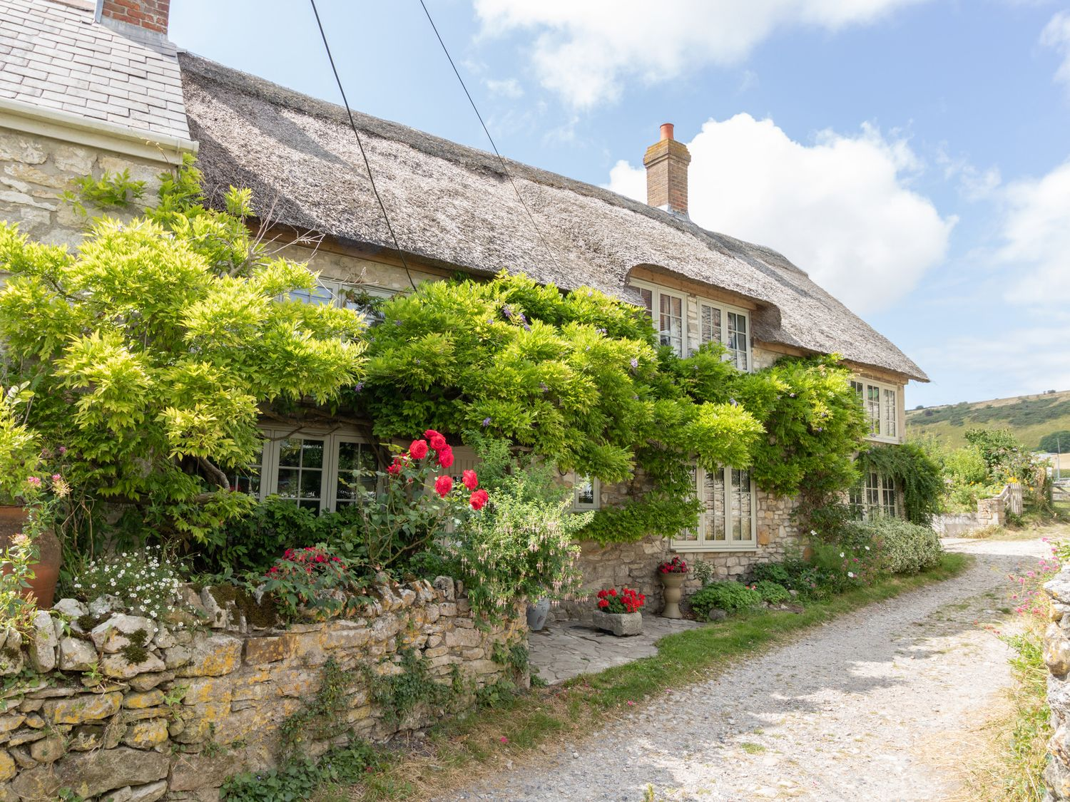 Fox Cottage - Dorset - 1012260 - photo 1