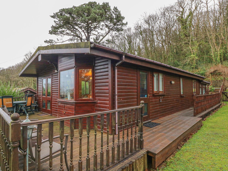 36 Amberwood - Devon - 1017908 - photo 1