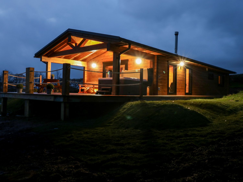 Bryn Eiddon Log Cabin - Mid Wales - 1018963 - photo 1