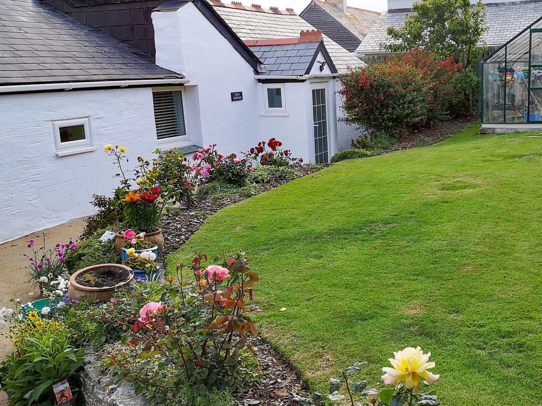 Cove Cottage - Cornwall - 1024282 - photo 1