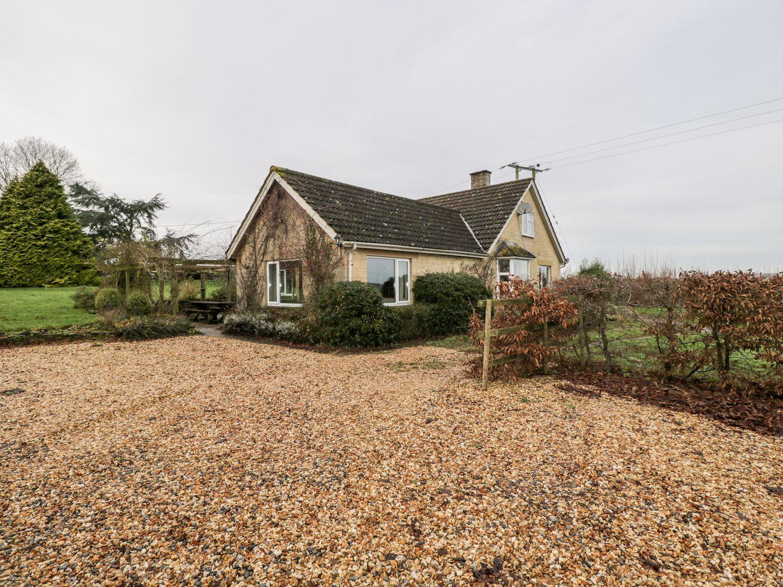 Wych Elm - Somerset & Wiltshire - 1034067 - photo 1