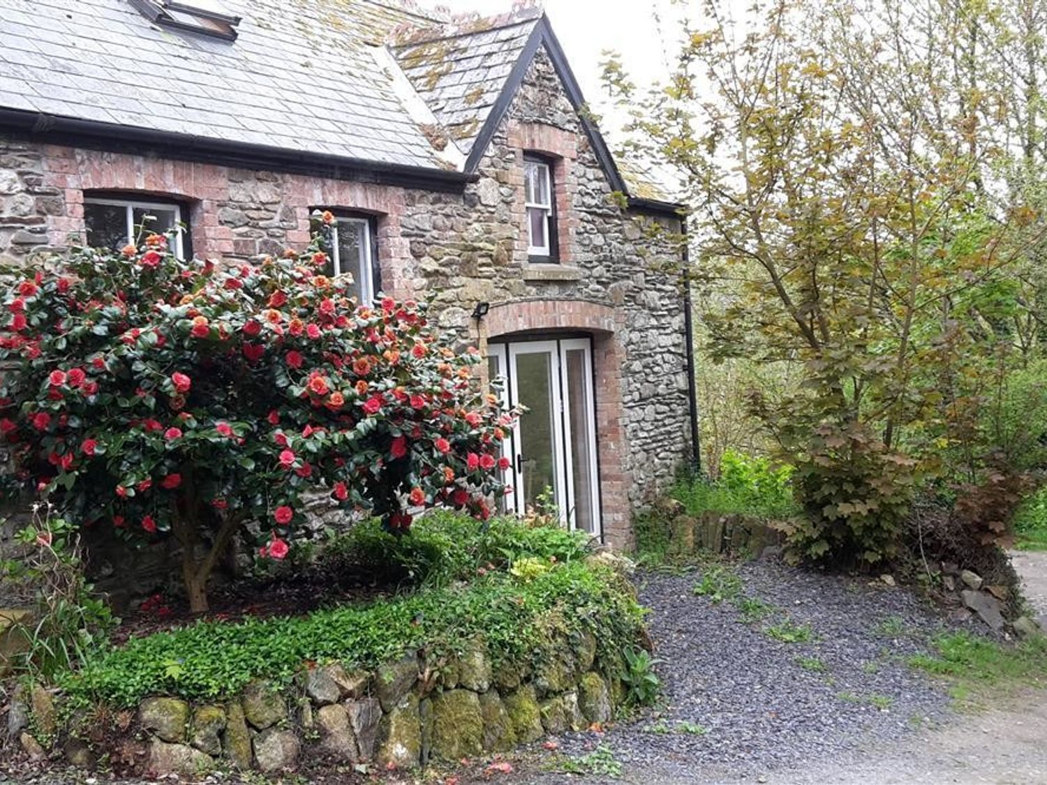 Cwmbrandy Cottage - South Wales - 1035730 - photo 1