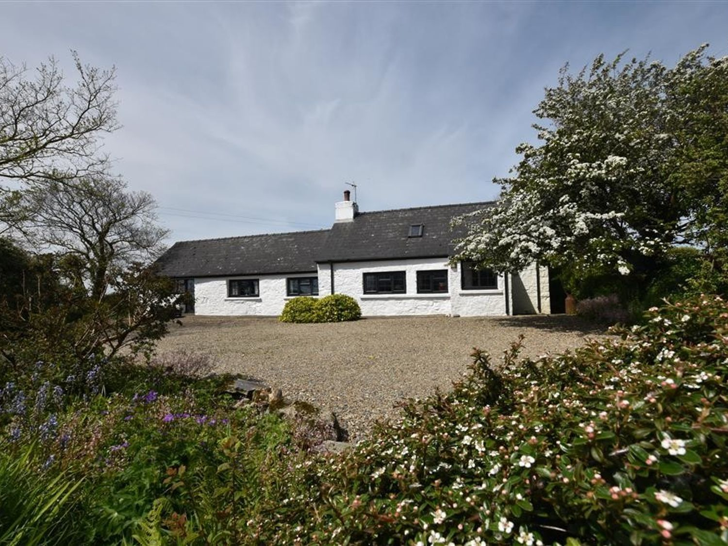 Tynewydd Cottage - South Wales - 1036267 - photo 1