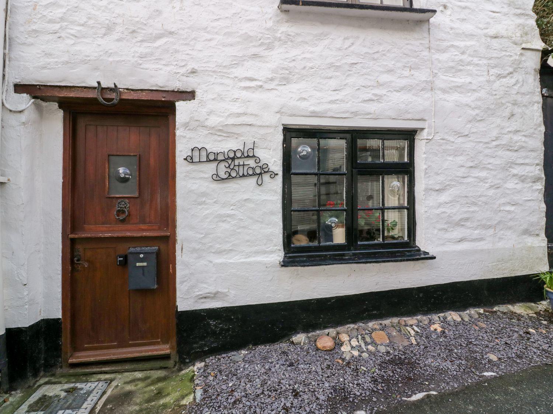 Marigold Cottage - Cornwall - 1038149 - photo 1