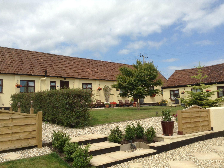 Whimple Cottage - Devon - 1038288 - photo 1