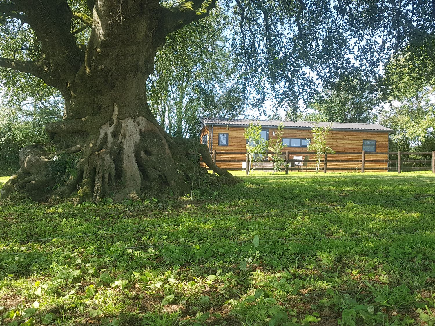 Beech Tree Lodge - Cornwall - 1038924 - photo 1