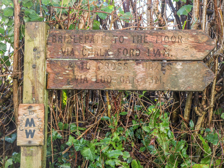 Wisteria Cottage - Devon - 1038966 - photo 1
