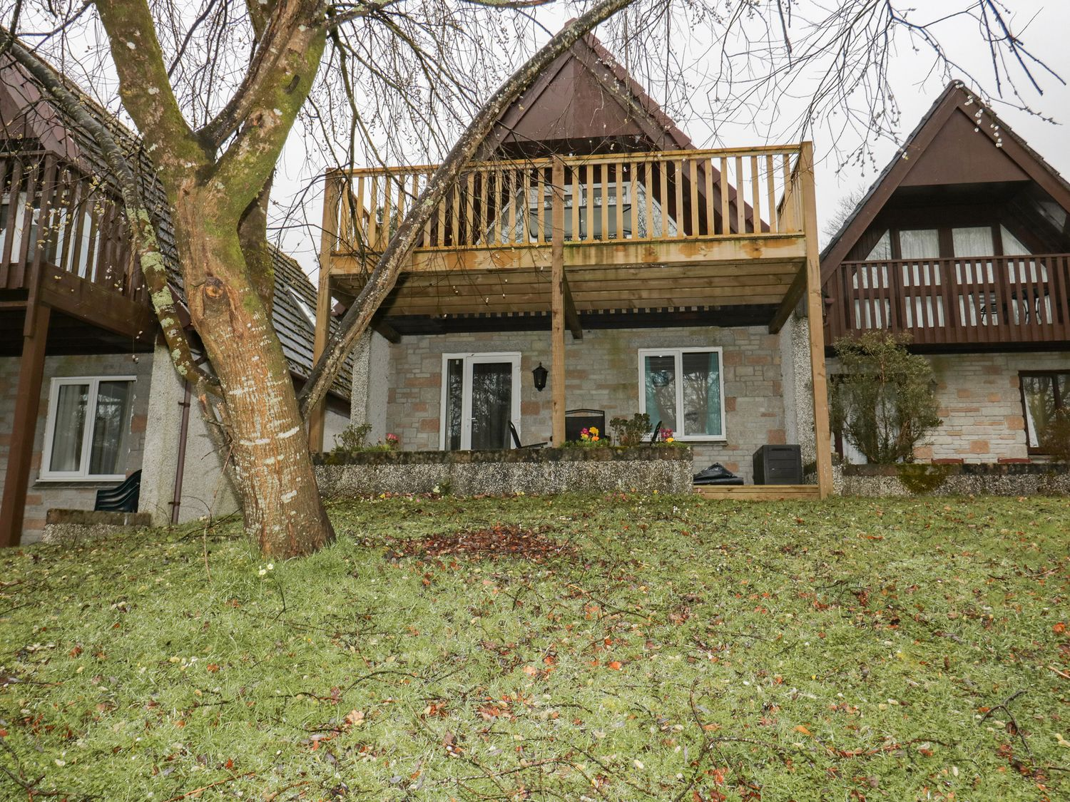 Treehouse Lodge - Cornwall - 1039114 - photo 1