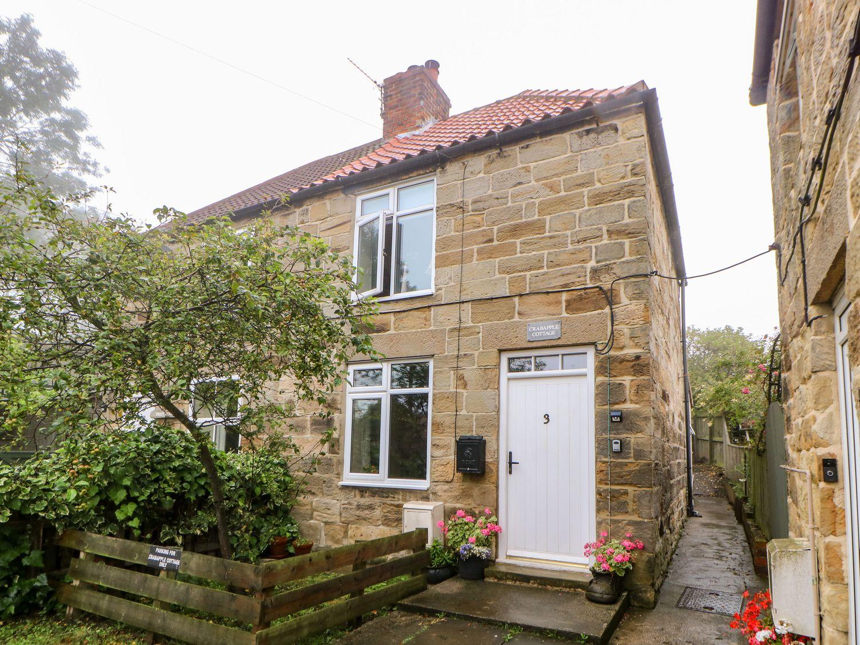 Crabapple Cottage - Whitby & North Yorkshire - 1044991 - photo 1