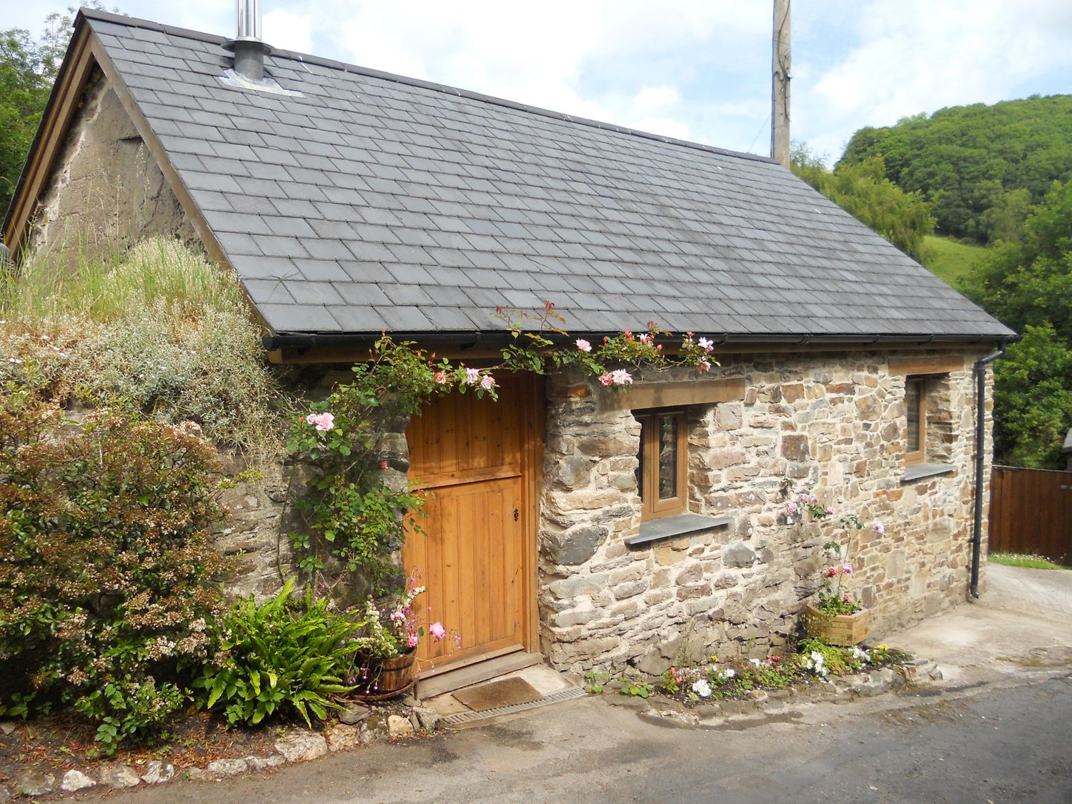 Primrose Cottage - Devon - 1051020 - photo 1