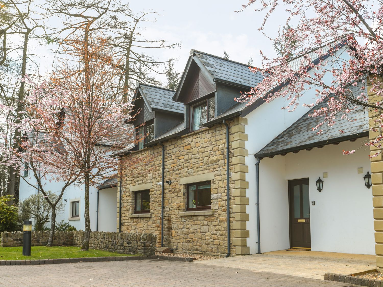 Honeybee Cottage - Lake District - 1051687 - photo 1