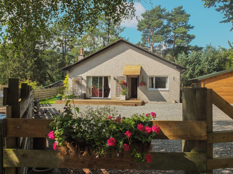 Beechwood Cottage - Scottish Lowlands - 1054684 - photo 1