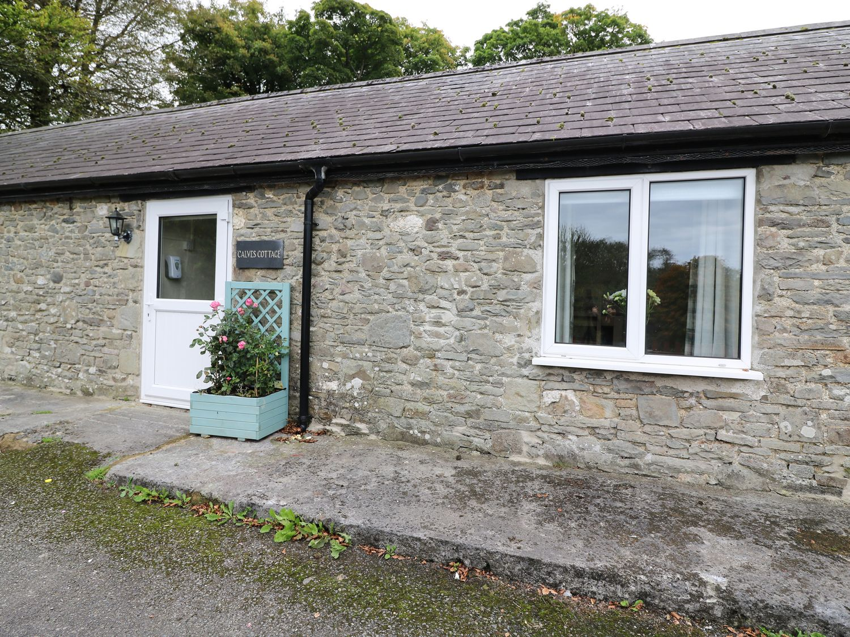 Calves Cottage - South Wales - 1055021 - photo 1