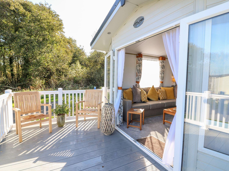 Milkwood Lodge - Mid Wales - 1057424 - photo 1