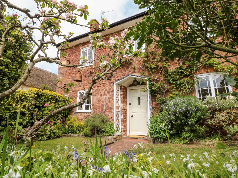 Vine Cottage - Somerset & Wiltshire - 1061074 - photo 1