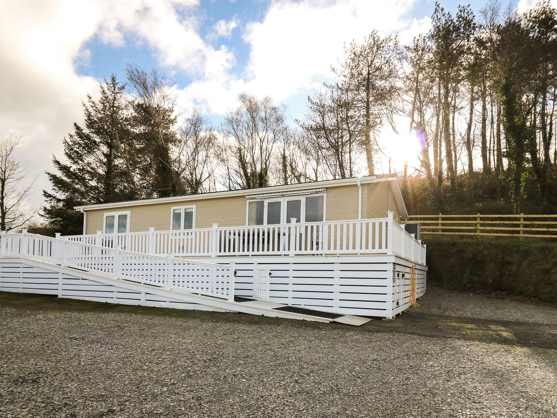McAuliffe Lodge - Mid Wales - 1064203 - photo 1