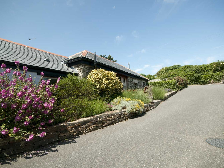 Lavender Barn - Cornwall - 1064981 - photo 1