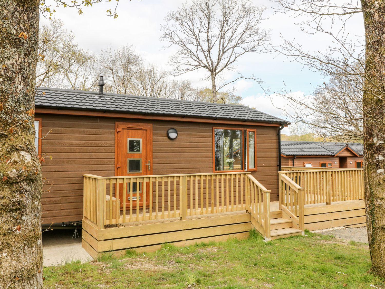 Dove Lodge - Devon - 1068231 - photo 1