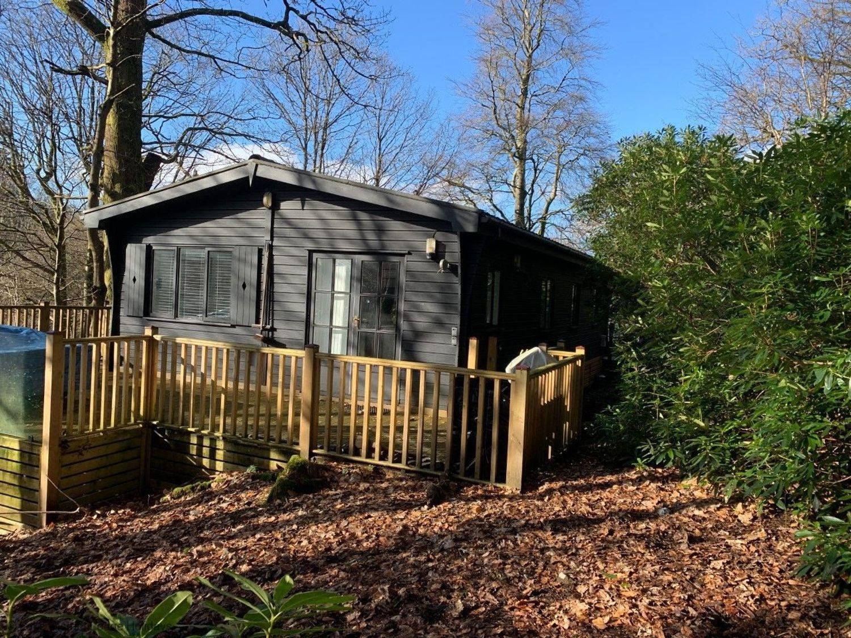 Tree Lodge - Lake District - 1068886 - photo 1