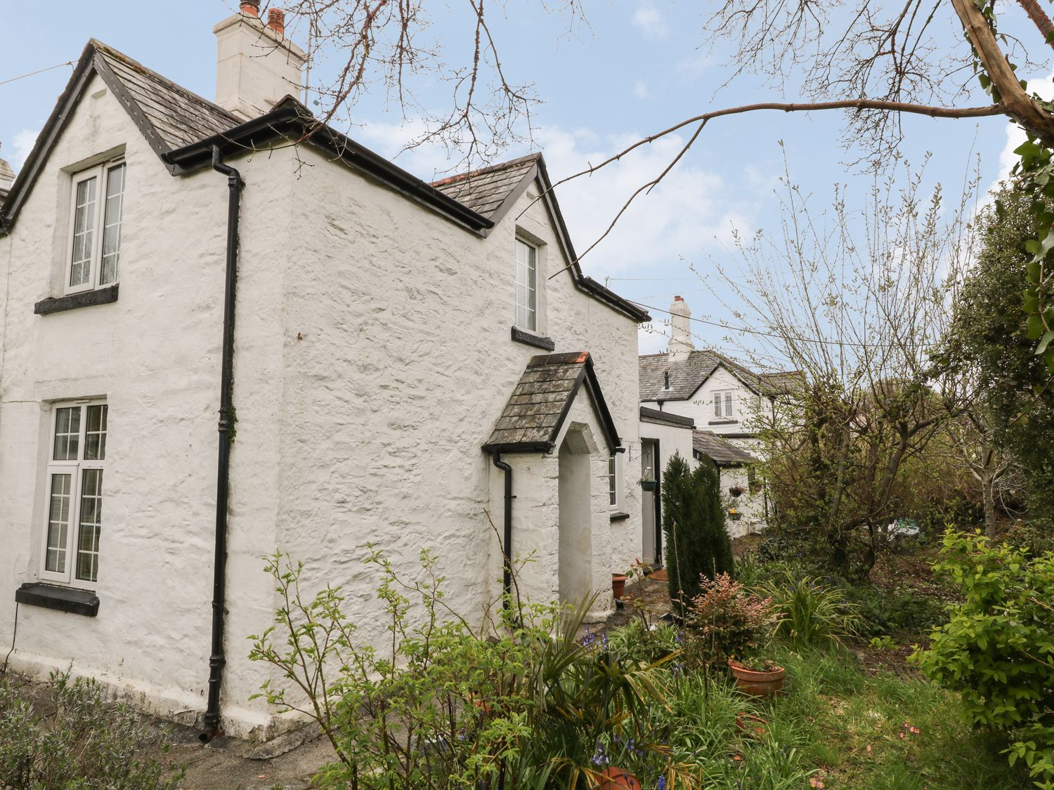 Bluebell Cottage - Devon - 1069024 - photo 1
