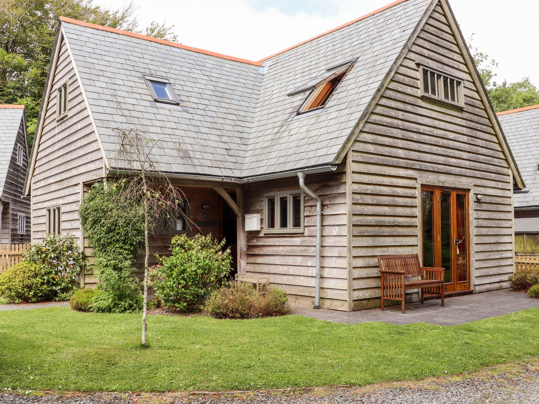 Bybrook Lodge - Cornwall - 1071113 - photo 1