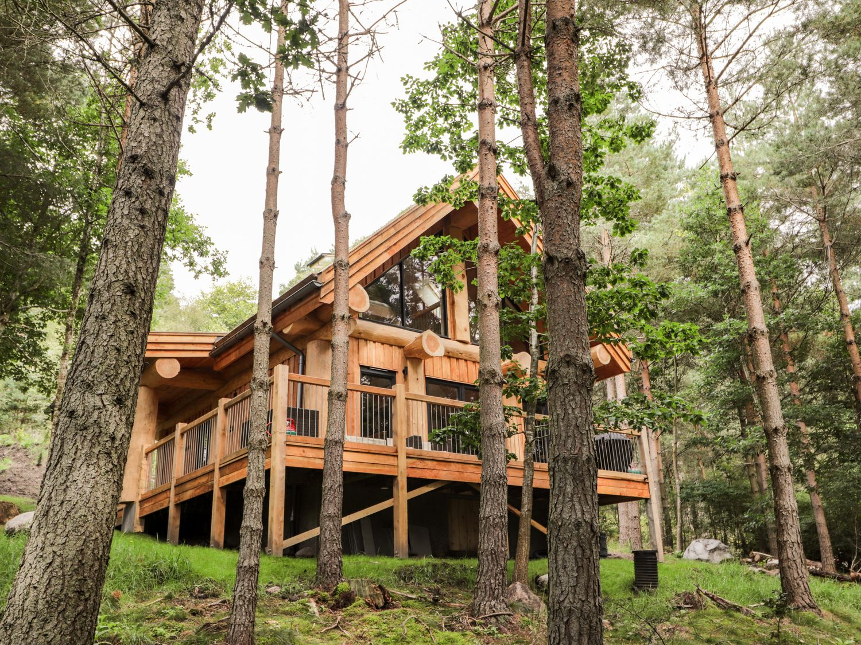 Pine Marten Lodge - Scottish Highlands - 1084022 - photo 1