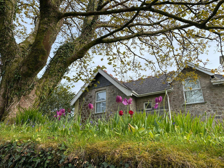Old School House - Devon - 1084123 - photo 1