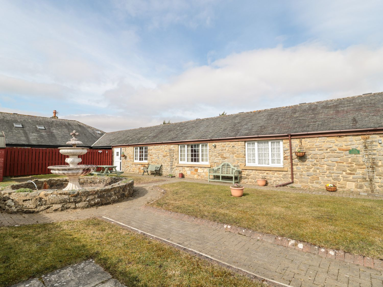 Goldfinch - Northumberland - 11690 - photo 1