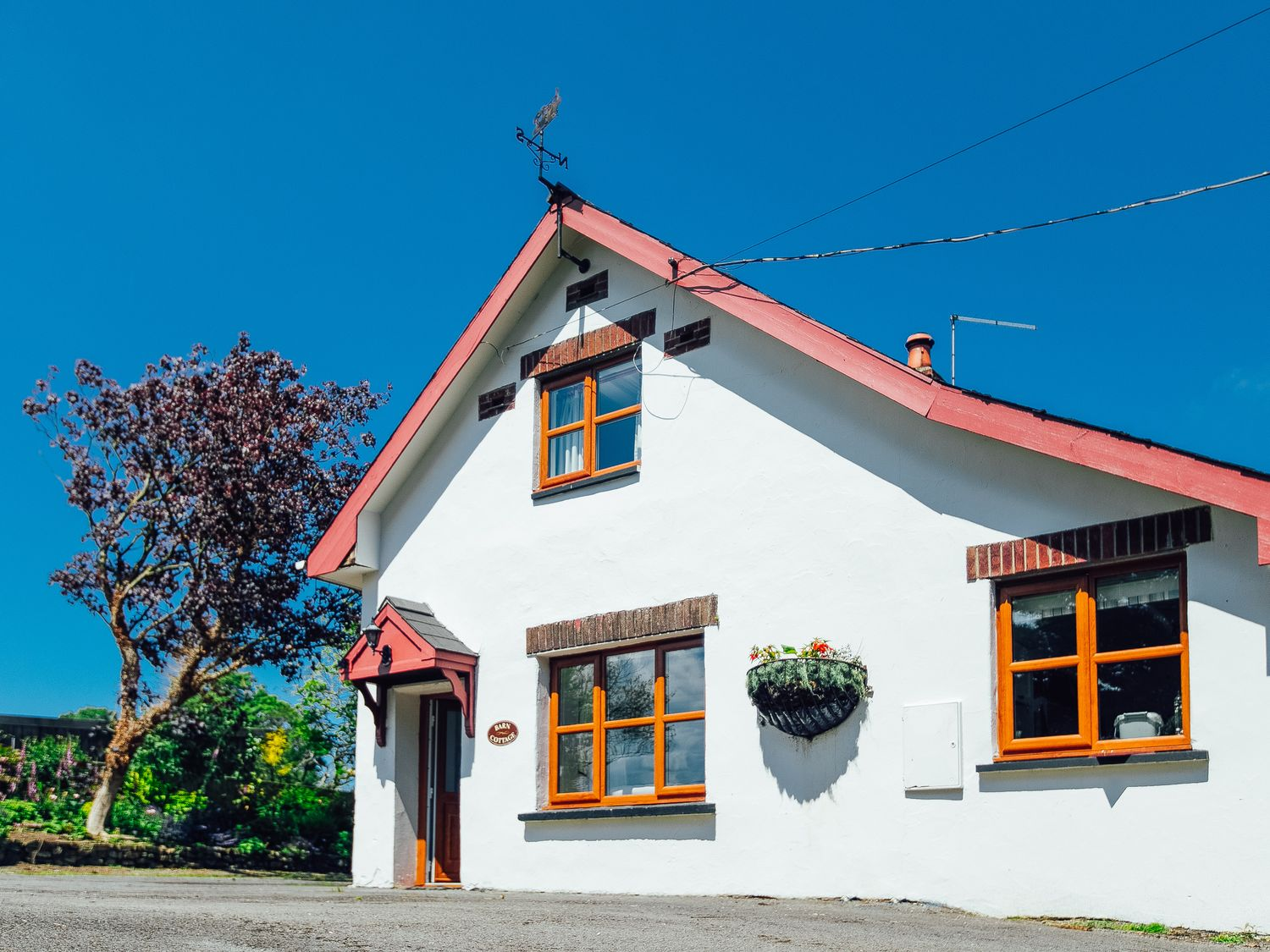 Barn Cottage - South Wales - 13893 - photo 1