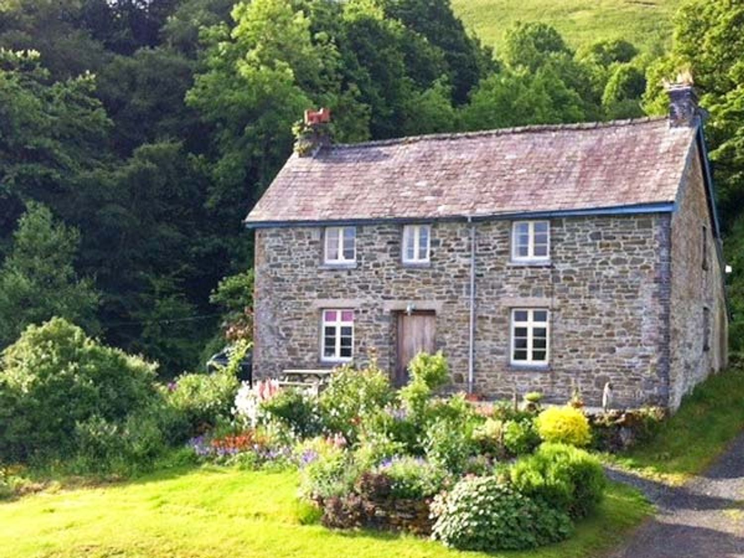 Fforest Fields Cottage - Mid Wales - 14396 - photo 1