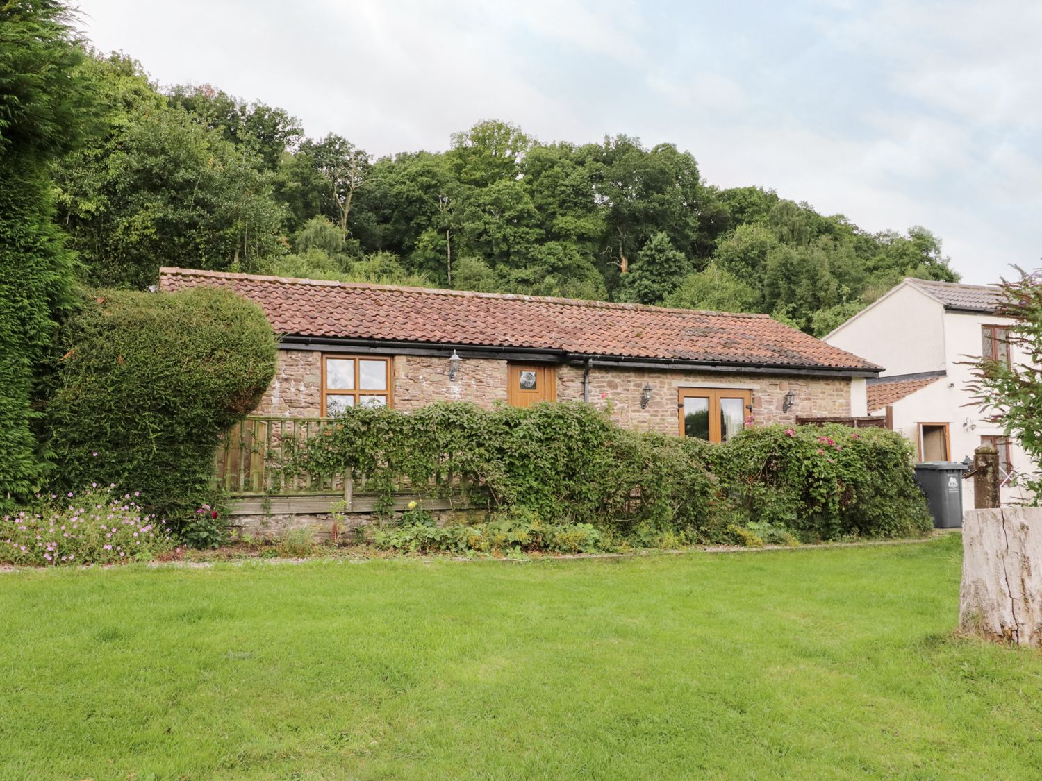 Nibletts Patch Cottage - Cotswolds - 16543 - photo 1