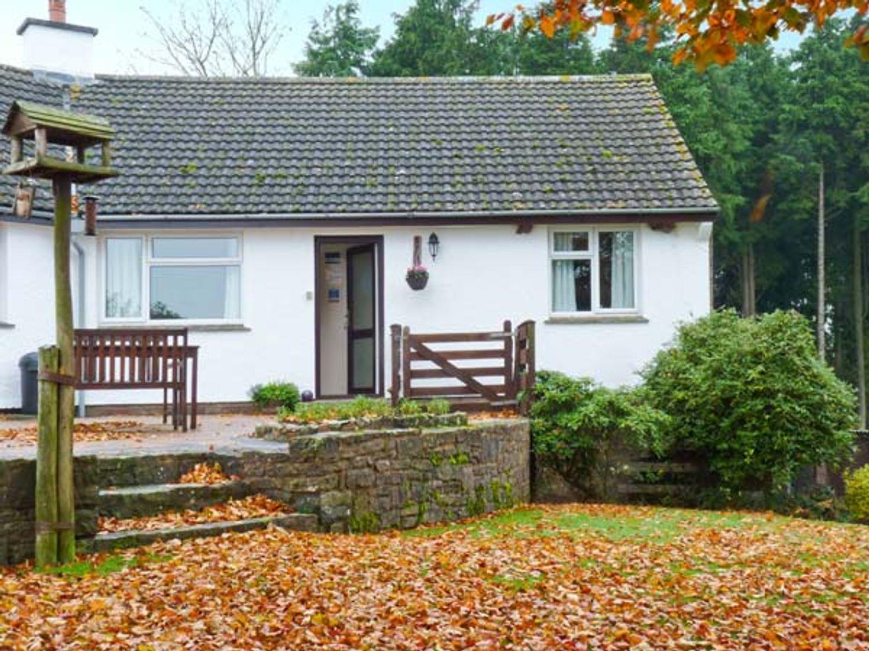 Stagsholt Lodge - Devon - 18132 - photo 1