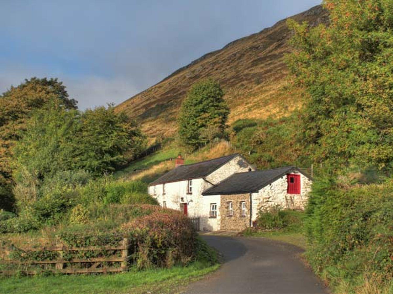 Maes-y-Felin - Mid Wales - 18734 - photo 1