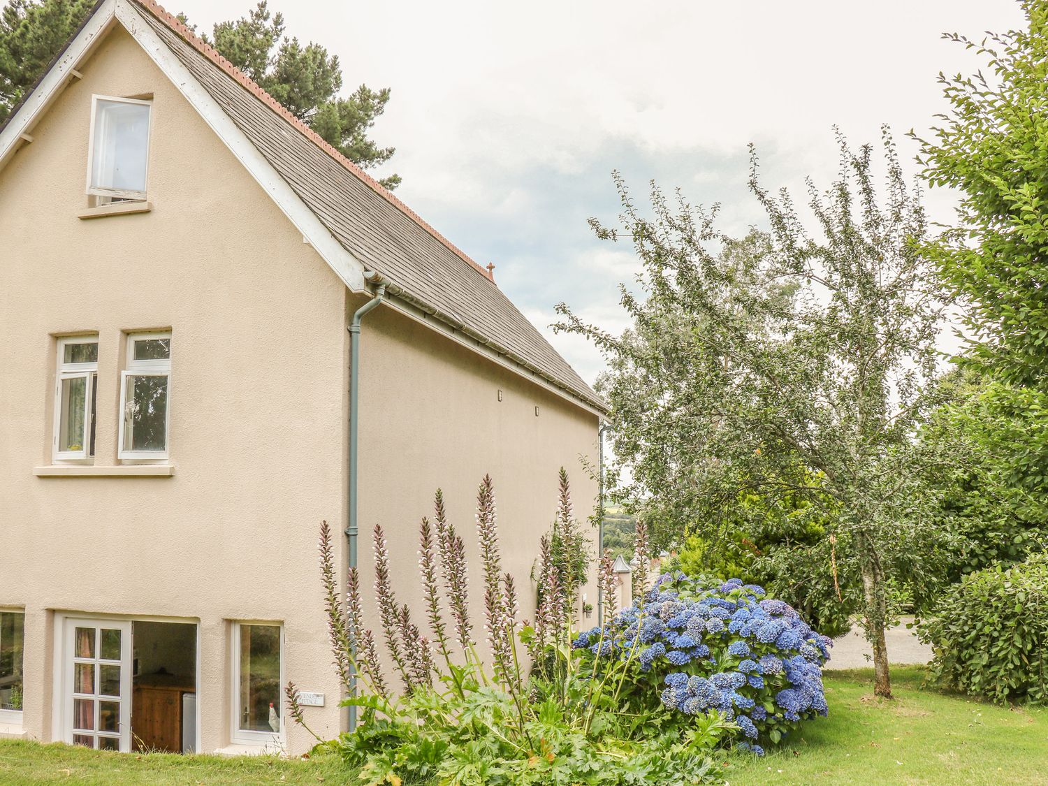 Lavender Cottage - Devon - 21618 - photo 1