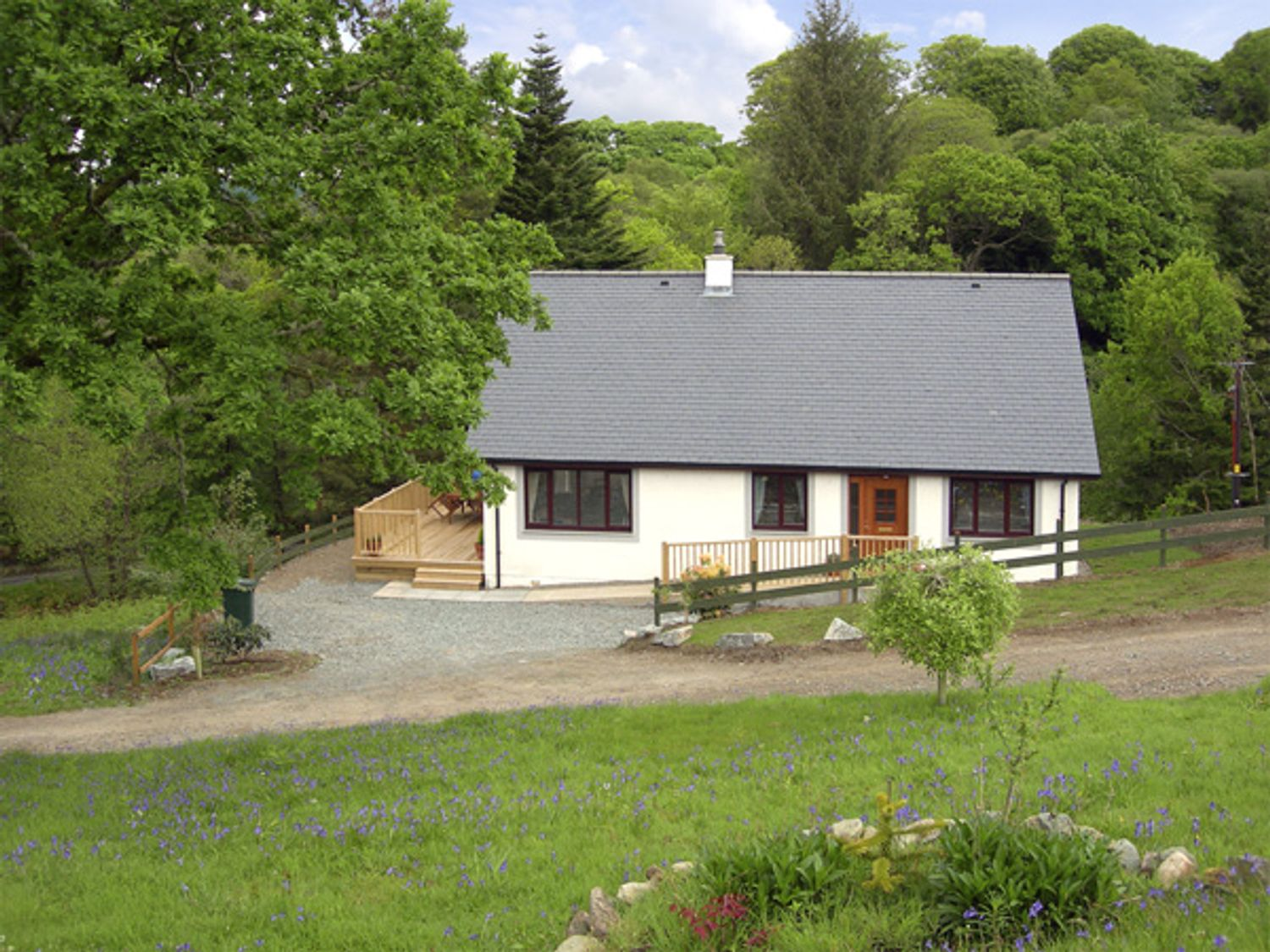 Bluebell Cottage - Scottish Highlands - 2333 - photo 1