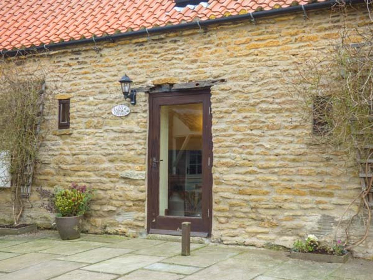 Ivy Cottage - Whitby & North Yorkshire - 25202 - photo 1