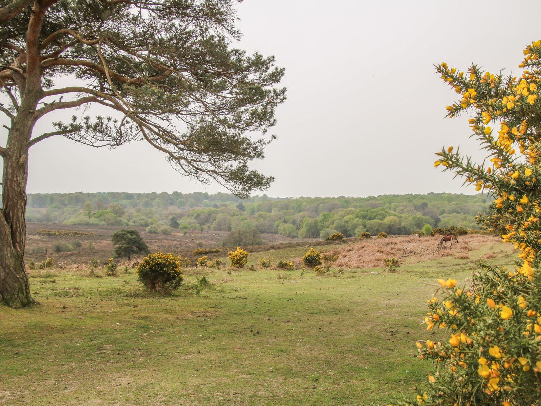 Orchard  Annexe, Boldre