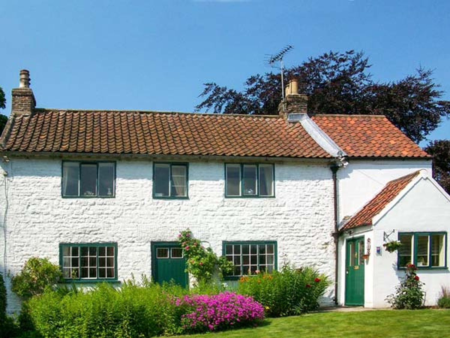 The White Cottage - Whitby & North Yorkshire - 26091 - photo 1