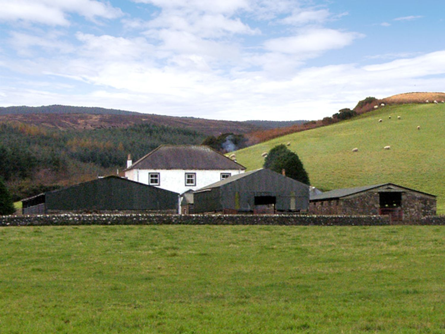 Homestone Farm - Scottish Highlands - 3729 - photo 1