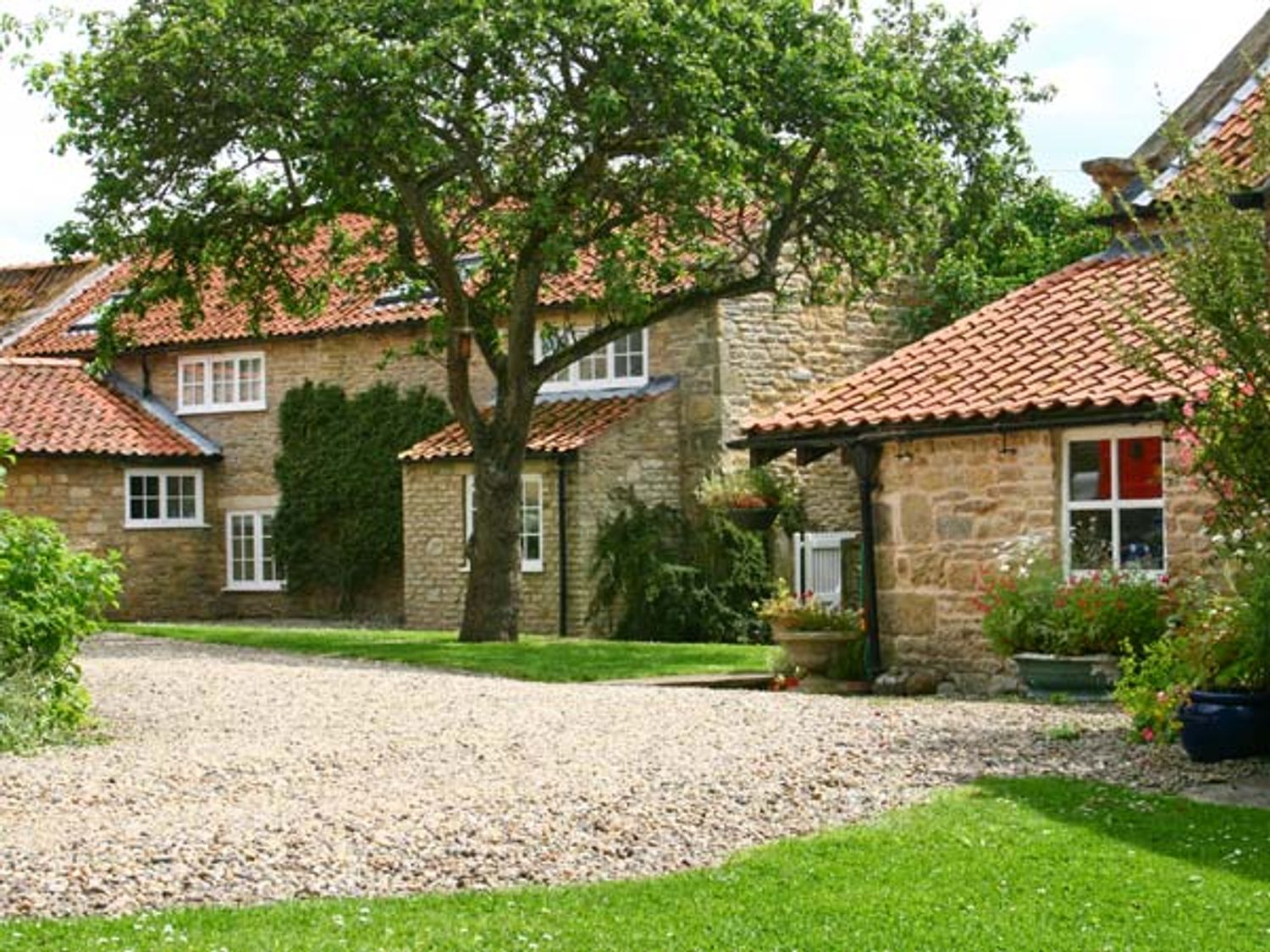 Lilac Cottage - North Yorkshire (incl. Whitby) - 3909 - photo 1