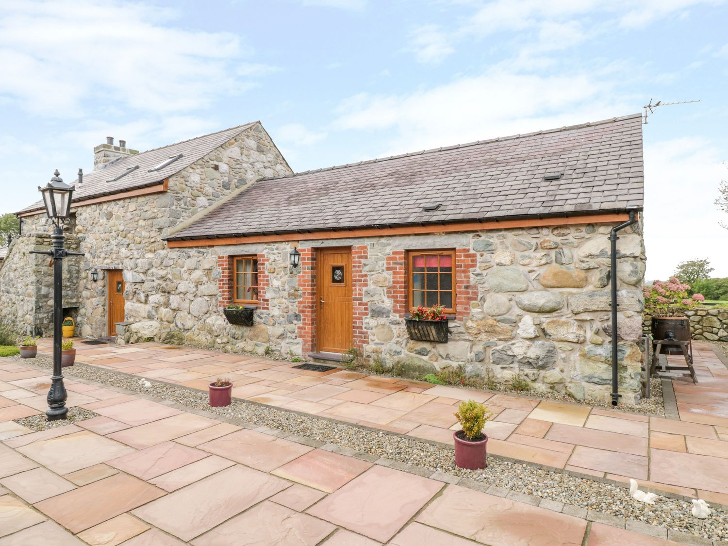 Poppy Cottage - North Wales - 4453 - photo 1